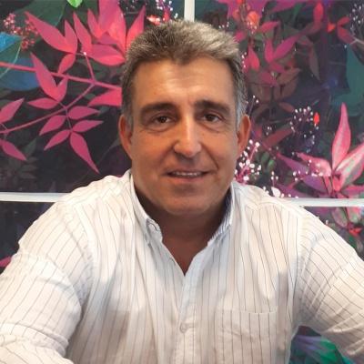 Miquel Mimó
